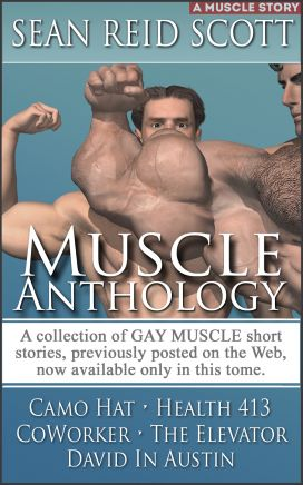 MUSCLE ANTHOLOGY